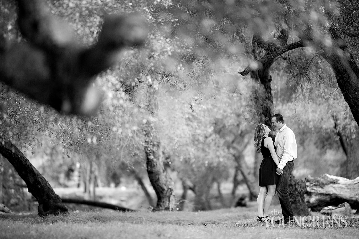 Del Dios Community Park engagement, San Diego engagement, meadow engagement, nature engagement, Escondido engagement, married wedding photographers