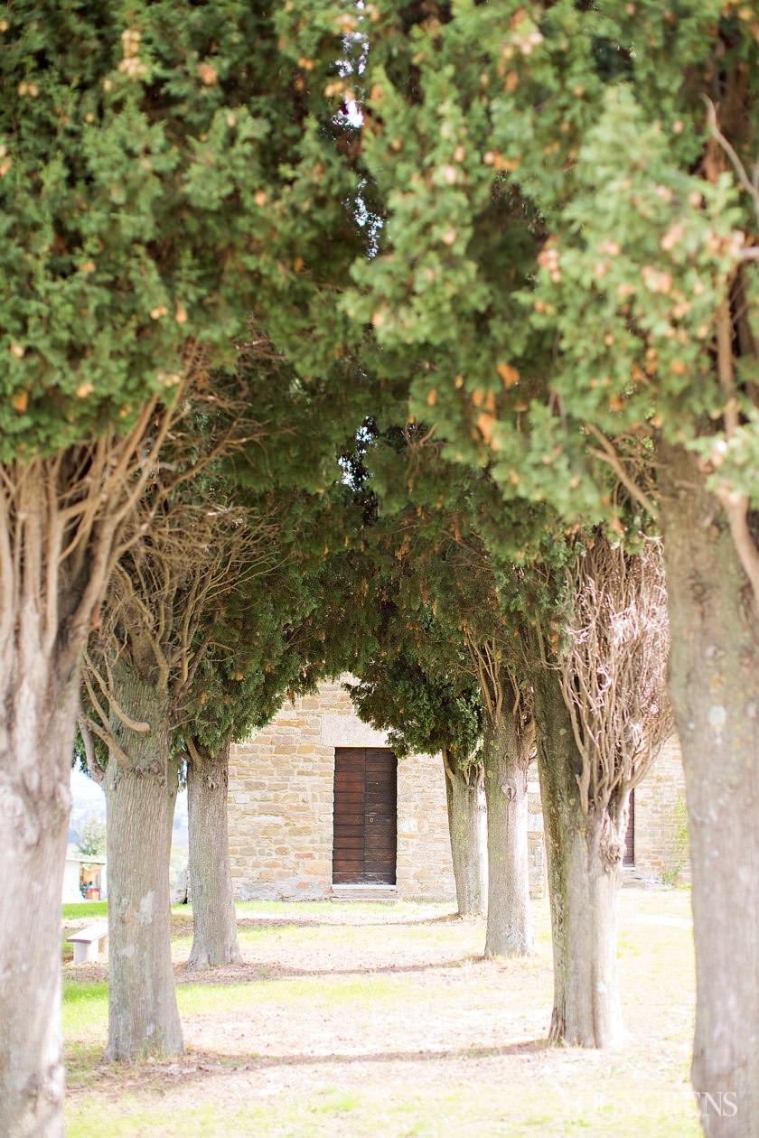 italy wedding photographers, spello italy photographer, destination wedding photographer, spello wedding photographer, umbria wedding photographer, italian olive trees, KISSing Italy