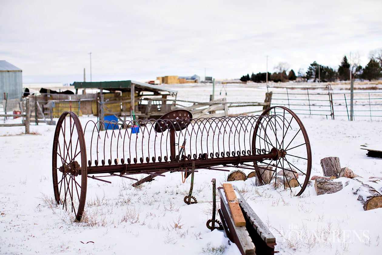 twin falls idaho, kimberly idaho, kincaid house in idaho, snowy landscape, snowy fields, winter hay fields, idaho winter, snow machining, snow mobiling, fairfield idaho, erin kincaid, erin youngren
